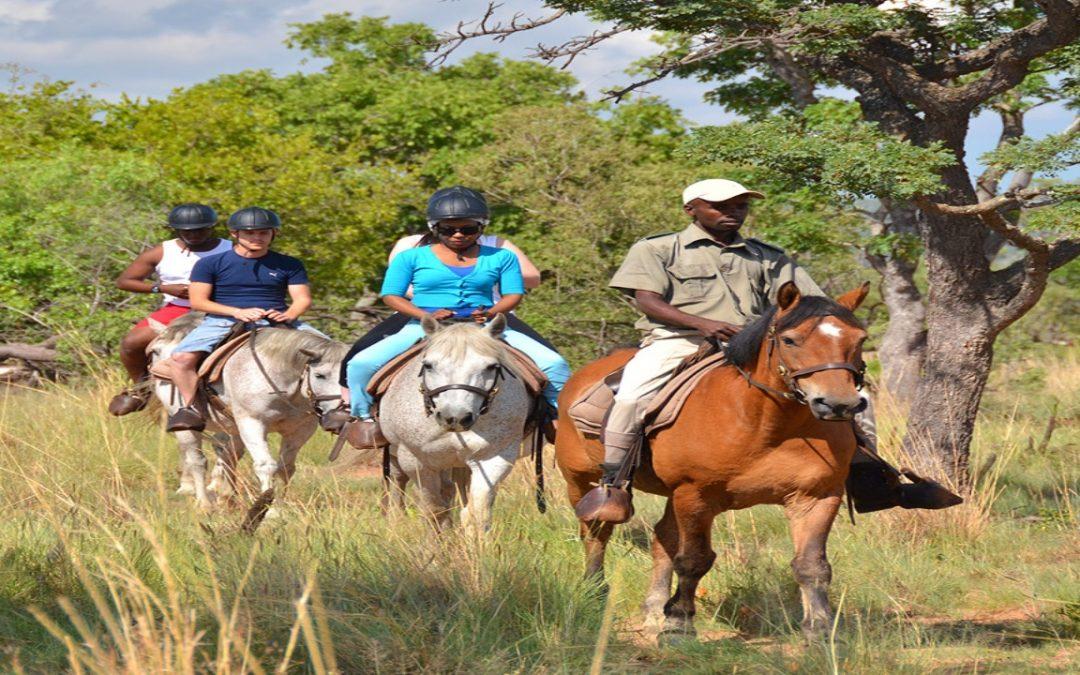 Local Safaris – Mabula Game Lodge